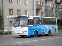 Курган. ПАЗ-4230-03 ав019