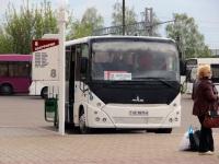 Бобруйск. МАЗ-241.030 AE8976-6