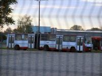 Ченстохова. MAN A11 NG272 SC 59952, Ikarus 280.70E SC 32166