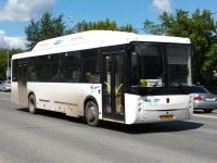 НефАЗ-5299-11-31 (5299GC) ао860