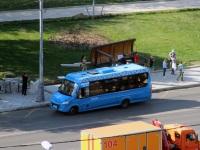 Нижегородец-VSN700 (Iveco Daily) м200те