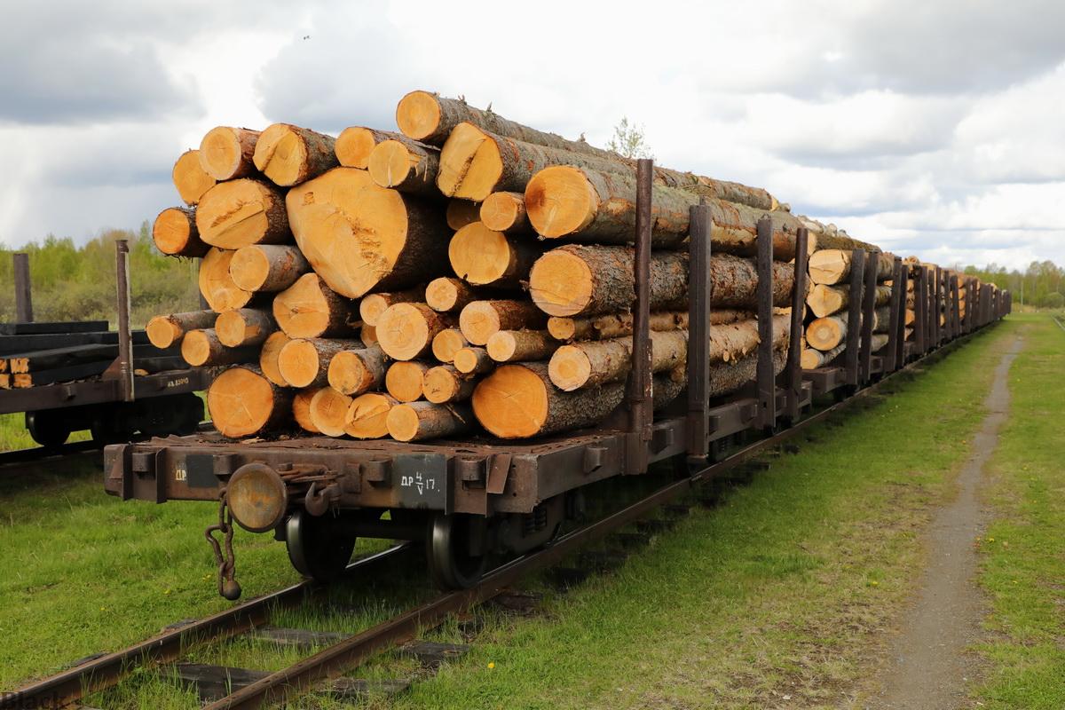 Алапаевск. Лесовозный поезд