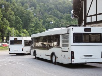 Сочи. МАЗ-103.586 в430нн, МАЗ-103.586 в432нн