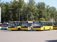 Санкт-Петербург. Golden Dragon XML6125CR в258км, Golden Dragon XML6125CR в264км, Golden Dragon XML6125CR в272км, Golden Dragon XML6125CR в293км