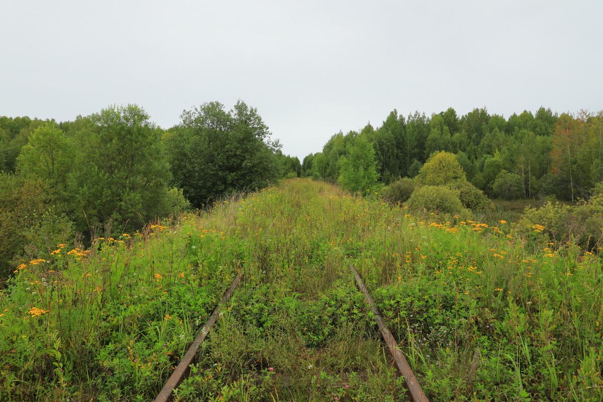 Шарья. Ведомственная линия Супротивный - Малое Раменье (Шортюгская железная дорога)