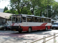 Краснодар. Ikarus 250.59 са551