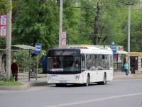 Ростов-на-Дону. МАЗ-203.069 е834хт