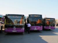 Стамбул. BMC Procity 34 EH 2982, BMC Procity 34 JS 6786, Temsa Avenue LF 34 EH 4356