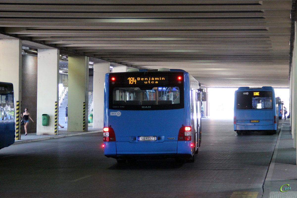 Будапешт. MAN A21 Lion's City NL283 NAY-323