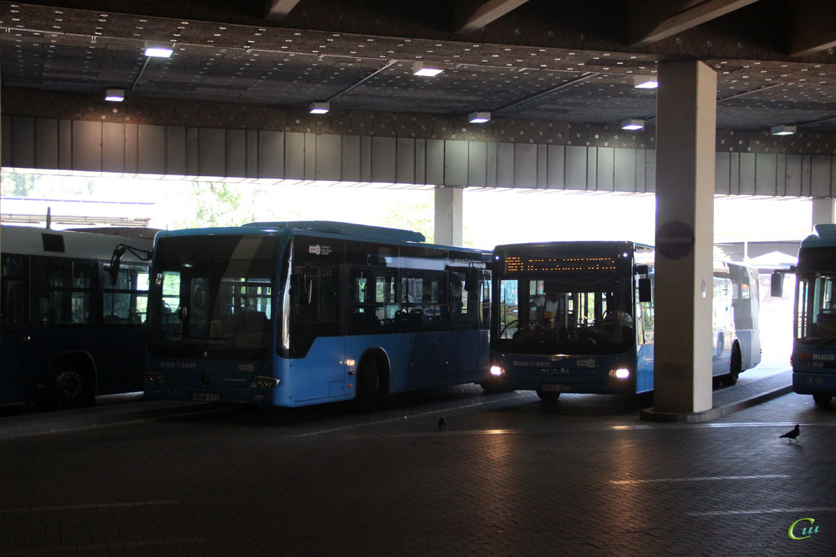 Будапешт. MAN A21 Lion's City NL283 NAY-323, Mercedes-Benz O345 Conecto LF NBW-012
