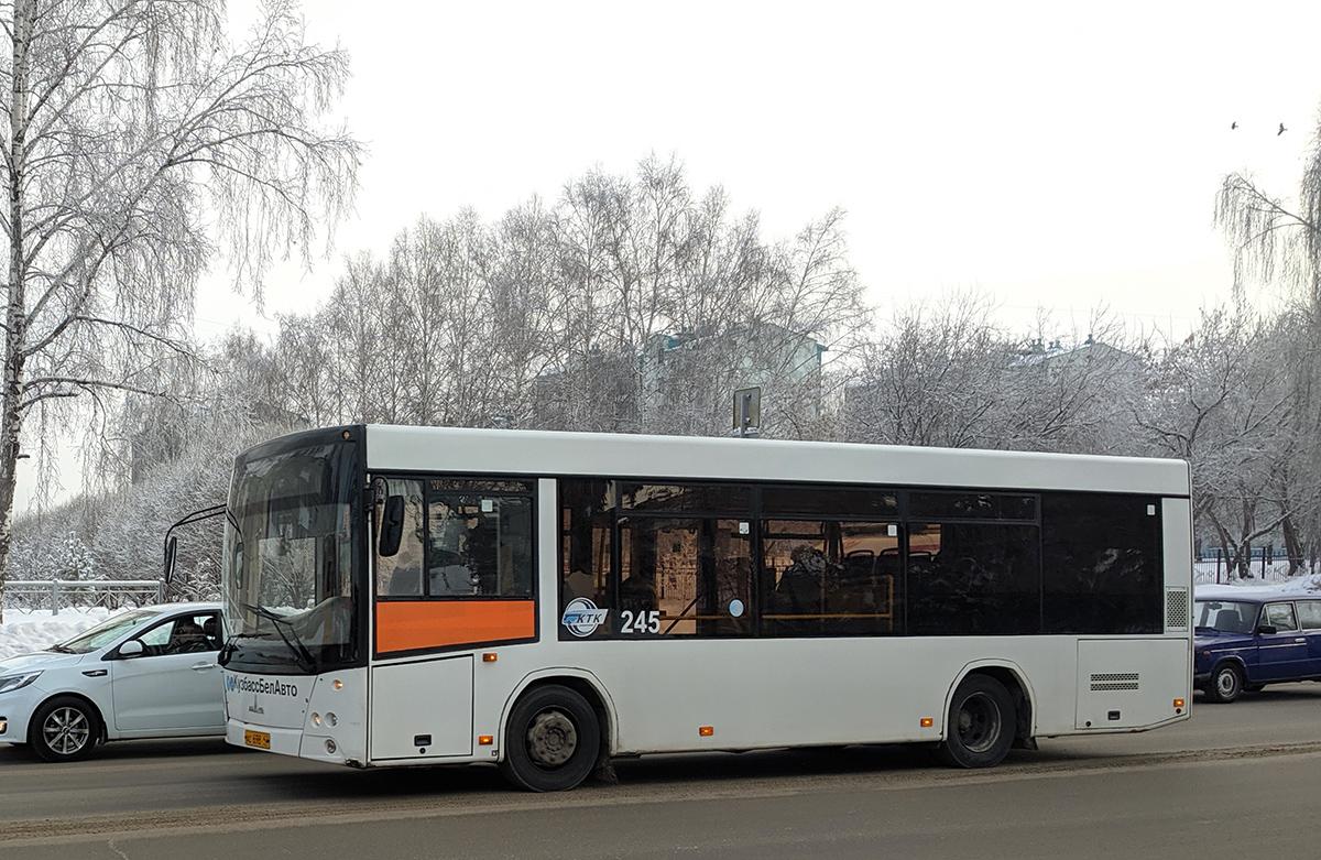 Кемерово. МАЗ-206.085 ас698