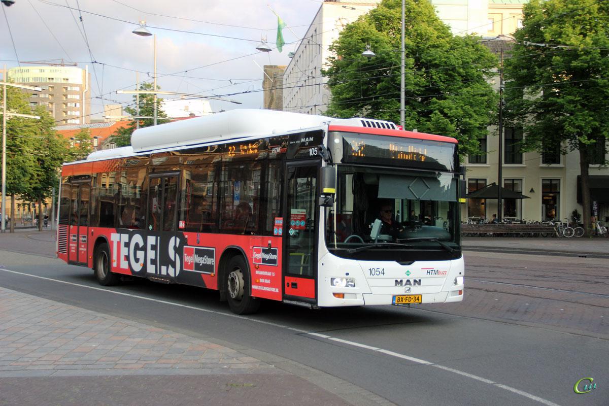 Гаага. MAN A21 Lion's City NL243 CNG BX-FD-34