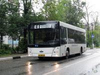 Ивантеевка. МАЗ-206.067 ео385