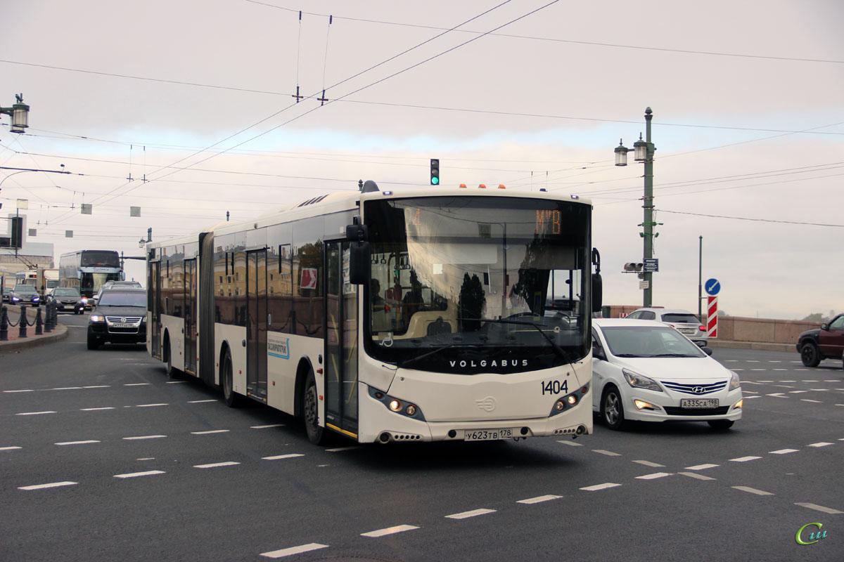 Санкт-Петербург. Volgabus-6271.05 у623тв