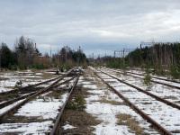Сосновый Бор. Станция Калище