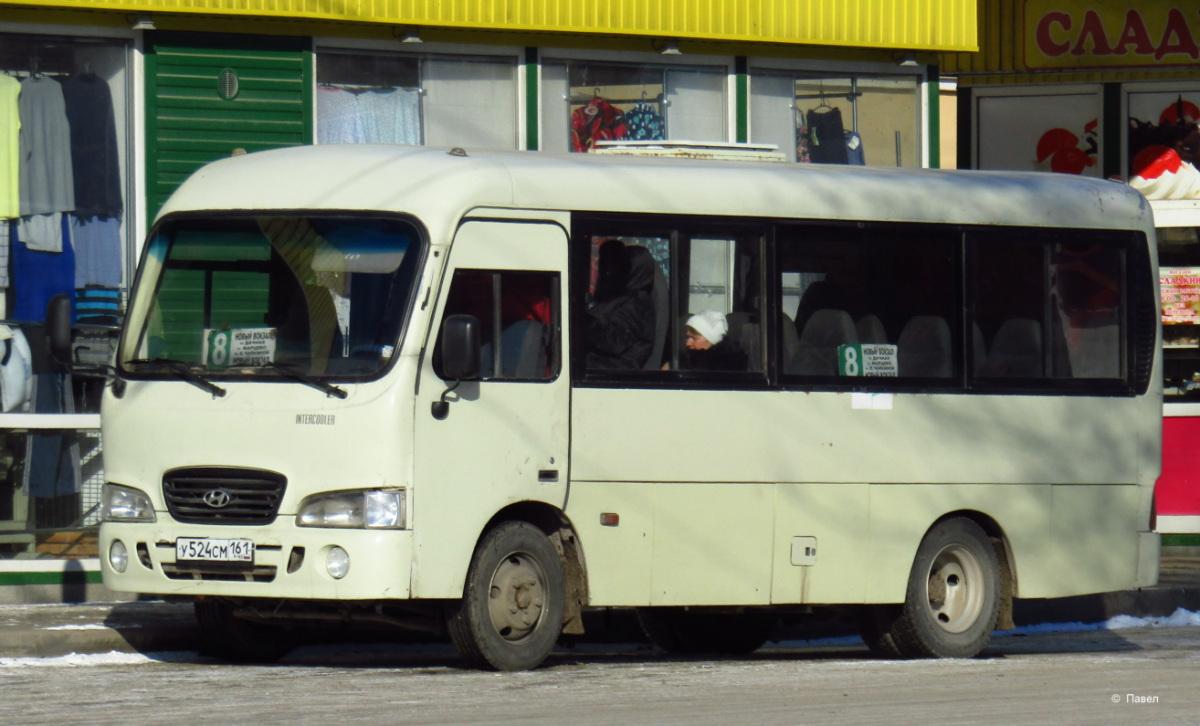 Таганрог. Hyundai County SWB у524см