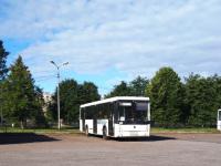 Выборг. Scania OmniLink CL94UB в092ук, НефАЗ-5299-30-52 (5299JN) о444ха, ПАЗ-320412-04 Вектор о885тр