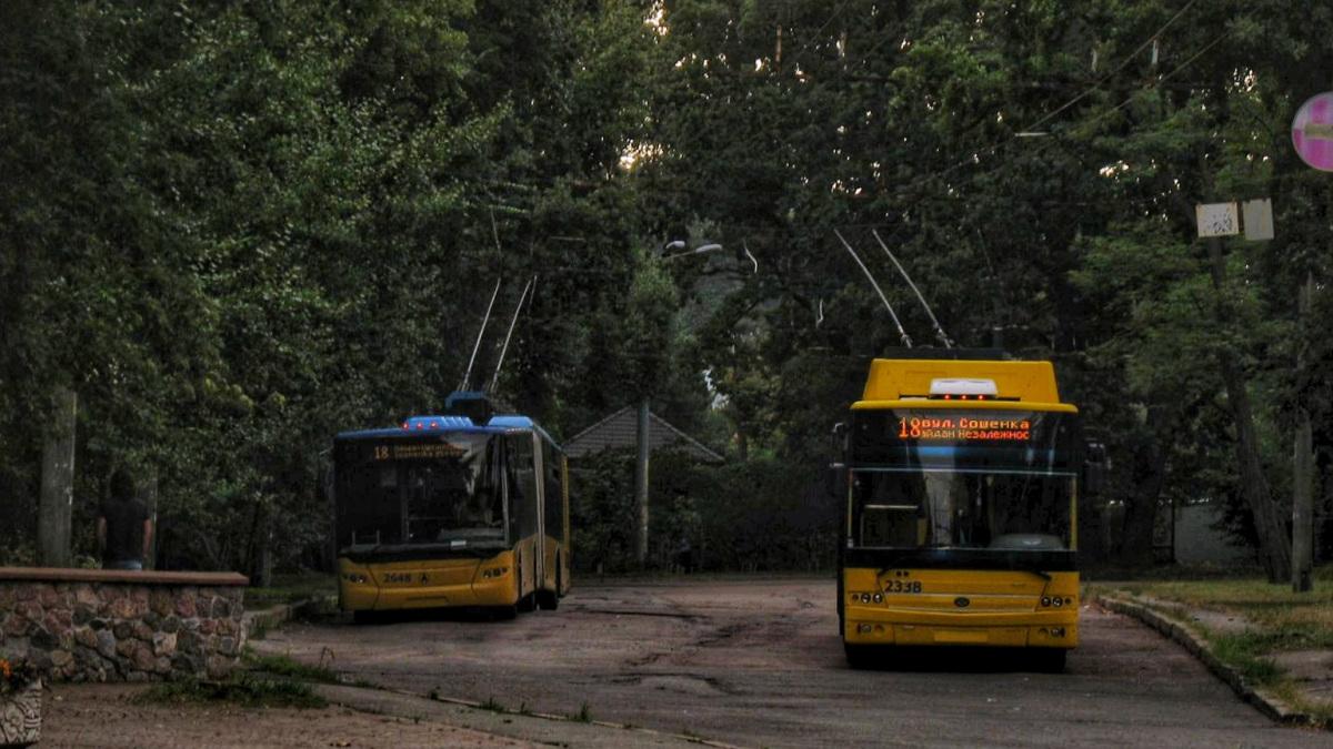 Киев. ЛАЗ-Е301 №2648, Богдан Т90117 №2338