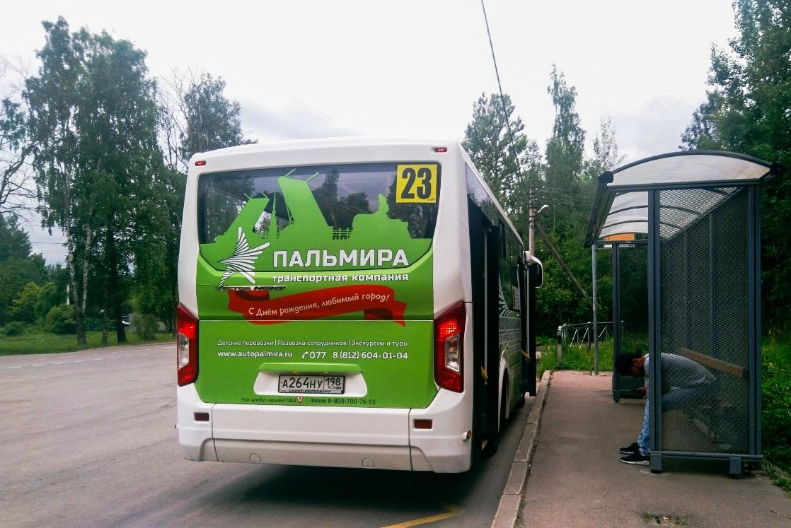 Санкт-Петербург. ПАЗ-320435-04 Vector Next а264ну