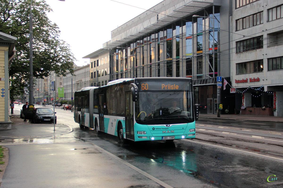 Таллин. MAN A40 Lion's City GL NG323 391 TAK