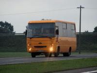 Брест. МАЗ-256.170 AE6466