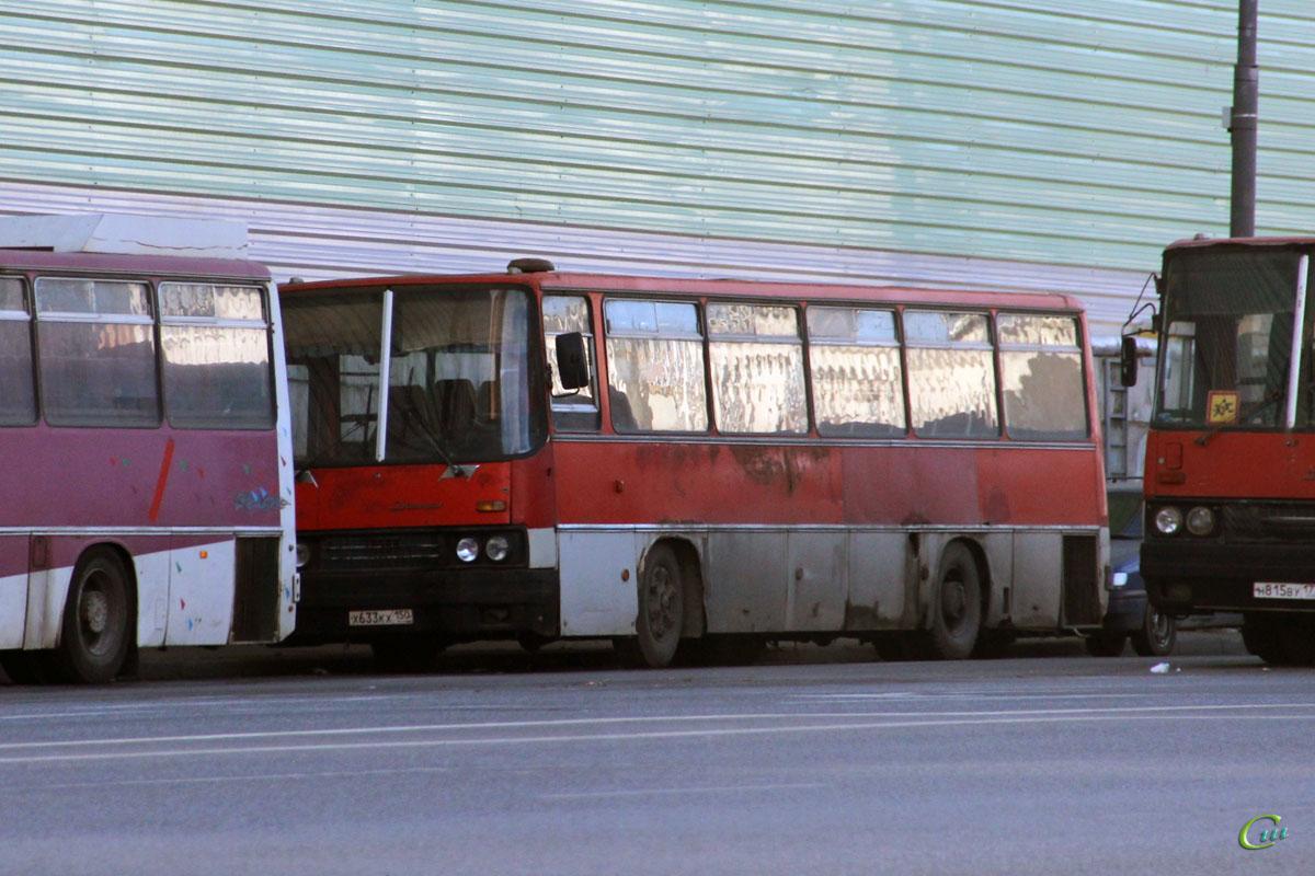 Москва. Ikarus 256.54 х633кх