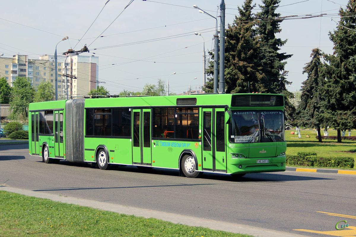 Гомель. МАЗ-105.465 AE2457-3