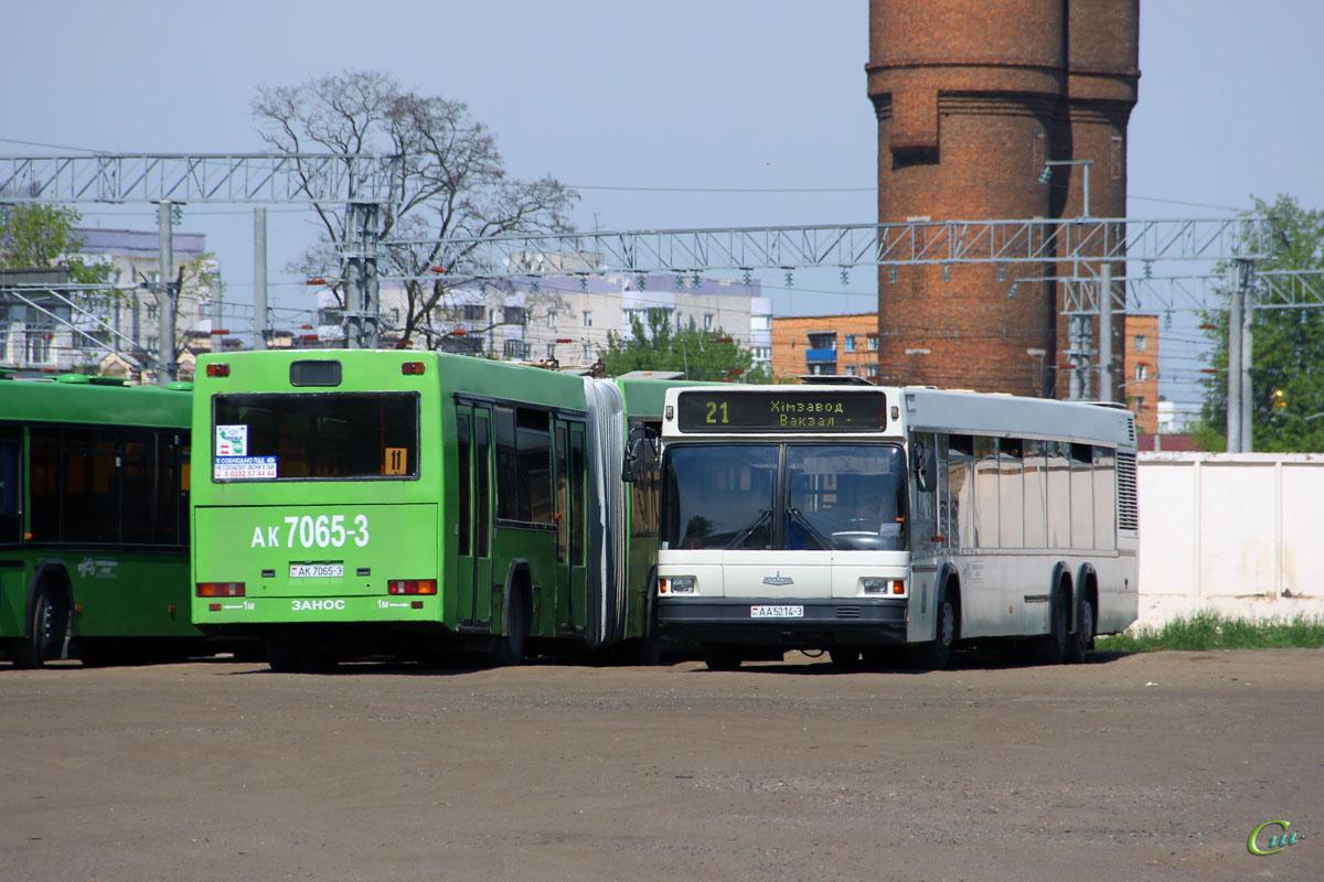 Гомель. МАЗ-107.065 AA5214-3, МАЗ-105.041 AK7065-3