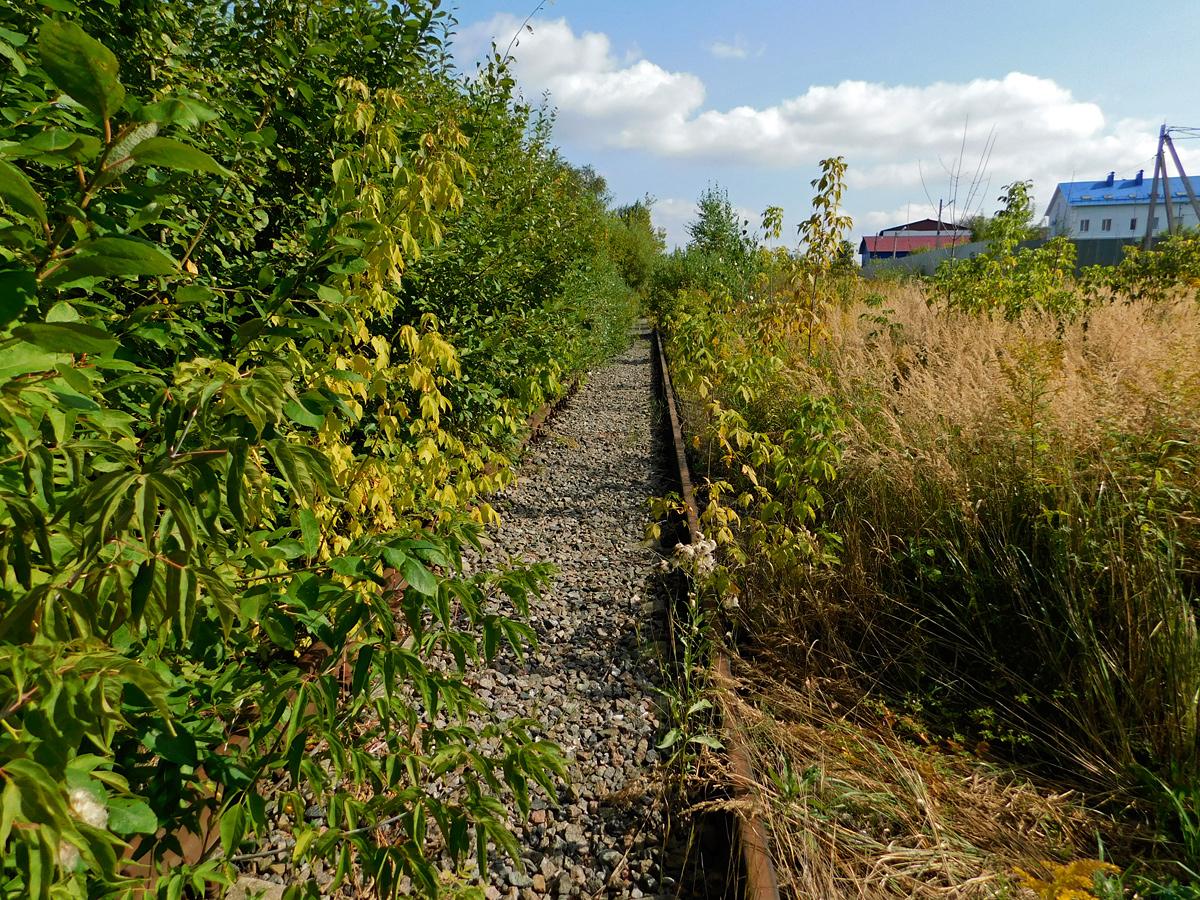 Калуга. Станция Калуга-Ока-Пристань - именно досюда ходили последние в истории Окской линии грузовые поезда