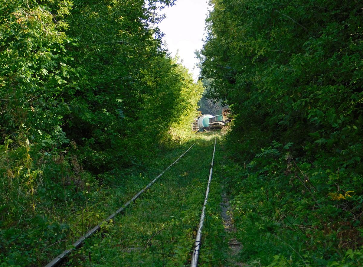 Калуга. Вид с линии на станцию Калуга-Товарная