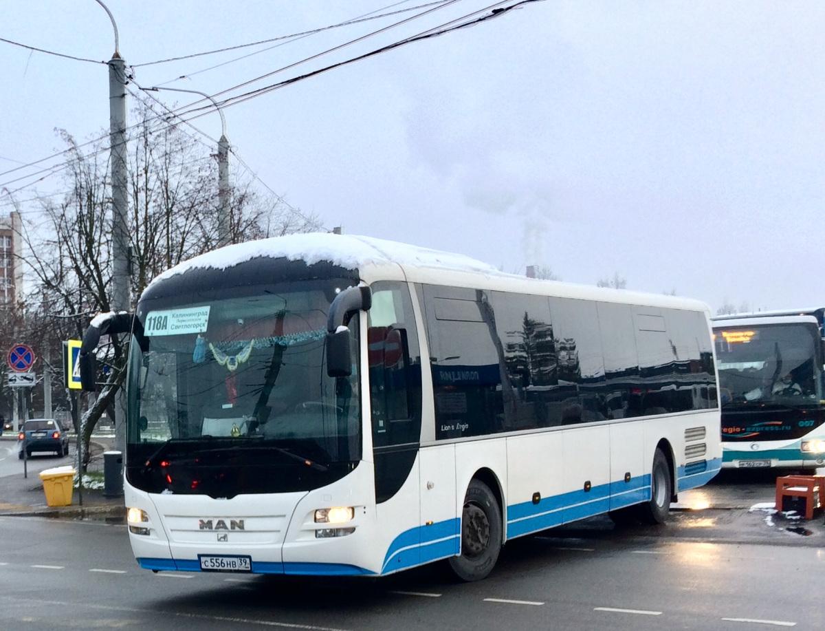 Калининград. MAN R12 Lion's Regio с556нв