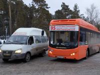 Новосибирск. Volgabus-5270.G2 к065ма, Луидор-2250 с840ну