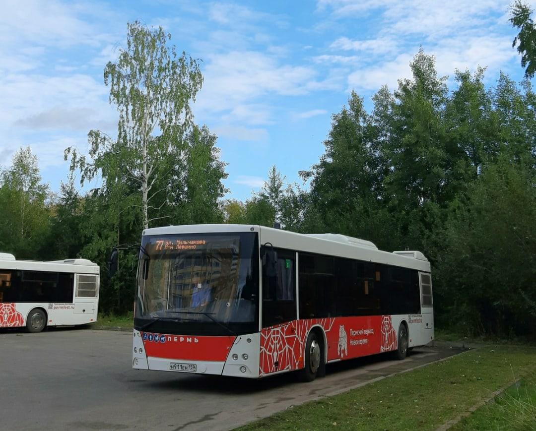 Пермь. МАЗ-203.016 н911ен