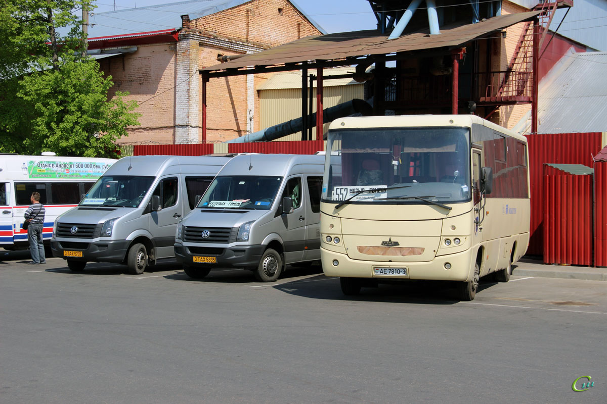 Гомель. МАЗ-256.170 AE7810-3, Volkswagen Crafter 3TAX5707, Volkswagen Crafter 3TAX5335