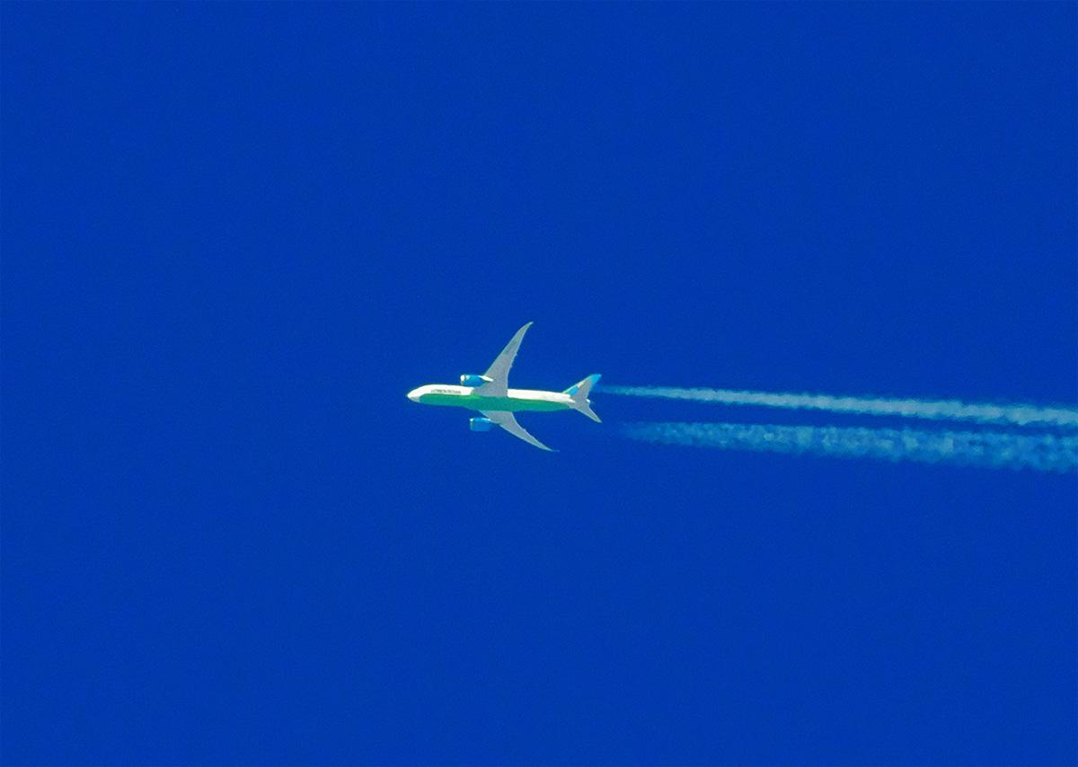 Калуга. Самолёт Boeing-787 Dreamliner а/к Uzbekistan Airlines рег