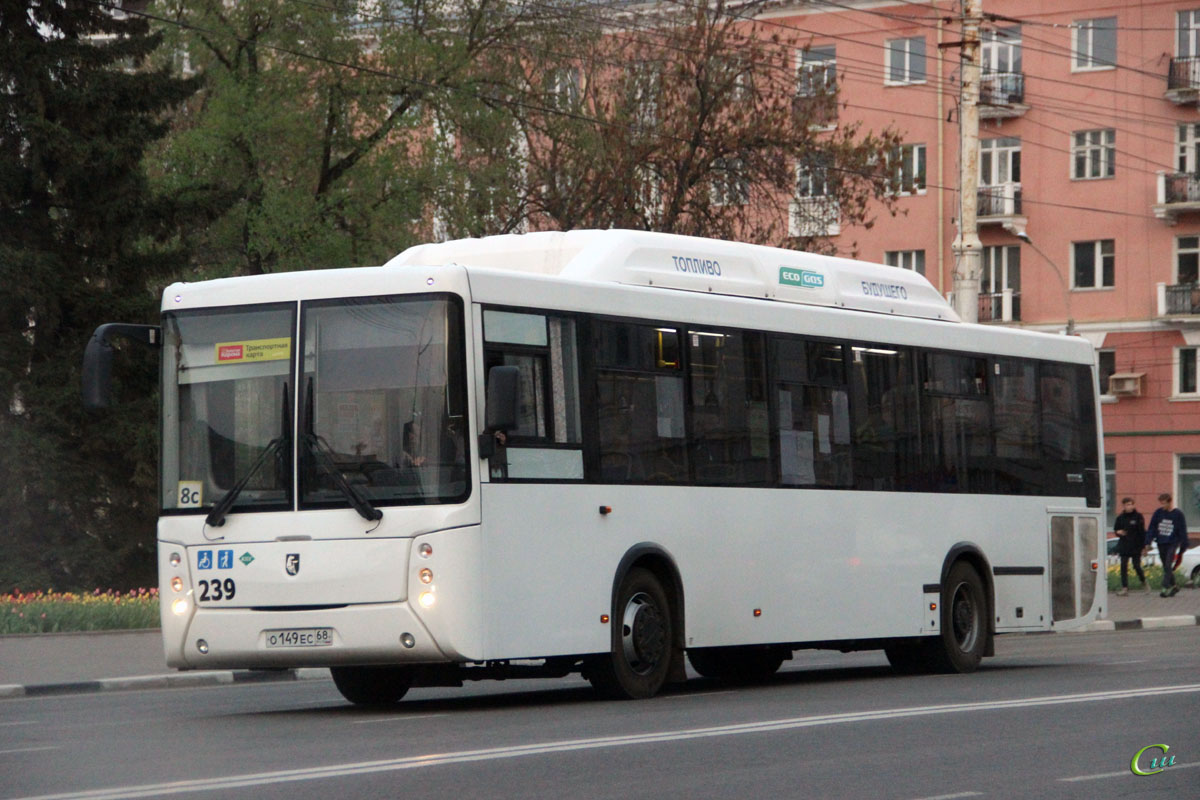 Тамбов. НефАЗ-5299-30-51 (5299UN) о149ес
